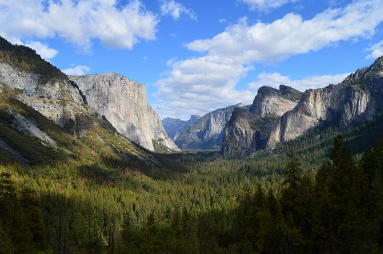 Yosemite National Park Honeymoon Midgins' Blog