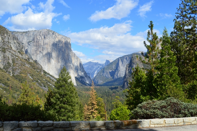 Yosemite National Park Honeymoon Midgins' Blog