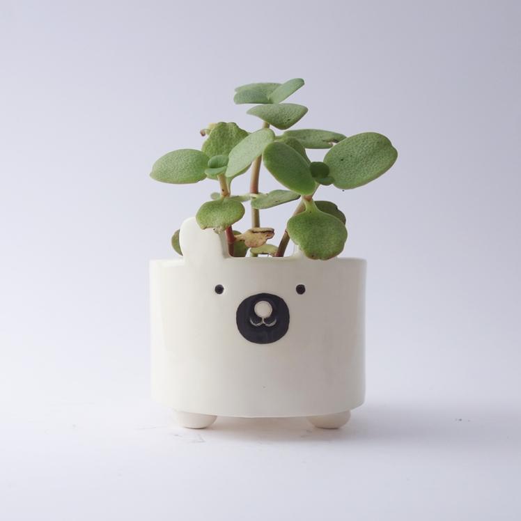 White Bear Plant Pot | Minky Moo Ceramics