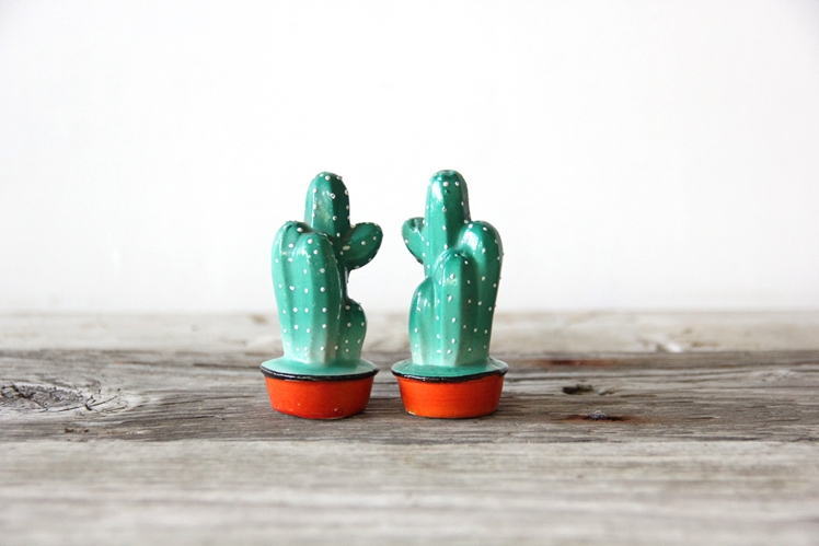 Cactus Salt & Pepper Shakers | Gallivanting Girls