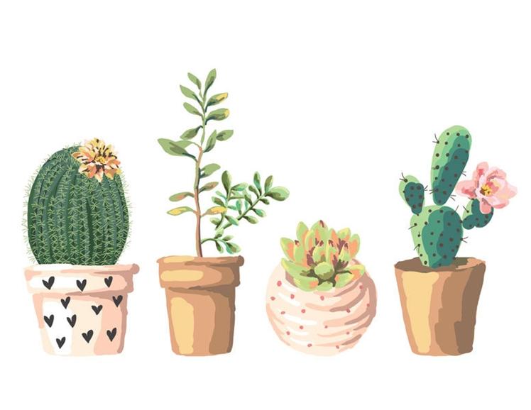 Succulent Illustration | Printable Quirks