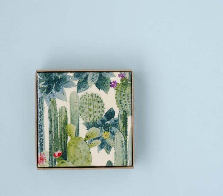 Succulent Cactus Garden Coasters | Tilissimo