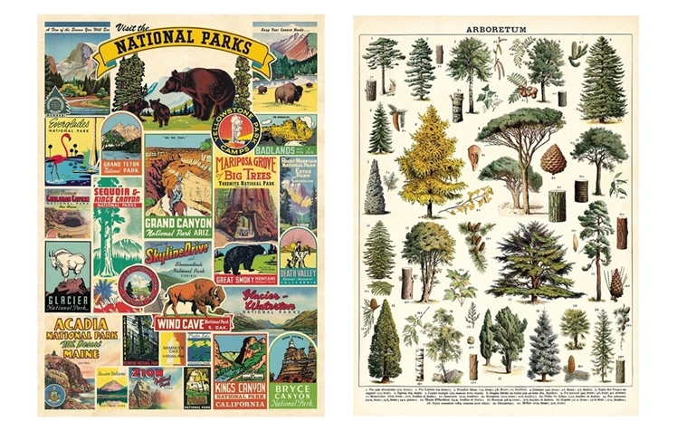 National Parks + Trees Posters | Luck and Luck